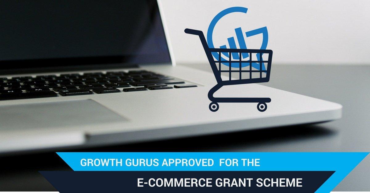 Growth Gurus Digital Marketing Growth Gurus approved for the E commerce Grant Scheme