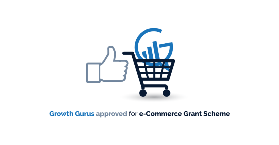 Growth-Gurus=ecommerce-grant-scheme